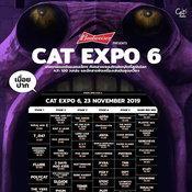 น่าดูมาก! Moderndog เตรียมขึ้นเวที Cat Expo 6 ด้วยสมาชิกยุคก่อตั้งวง