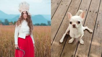 """""""ปาล์มมี่"""" โพสต์ประชดสุนัขตัวโปรด งานนี้แฟนๆ คอมเมนต์ฮานับร้อยข้อความ"""