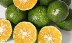 """""""ส้มชิคุวาซา"""" เคล็ดลับสุขภาพแข็งแรงและอายุยืนของชาวโอกินาว่า"""