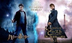 ครั้งแรกของโลกกับคาเฟ่โลกเวทมนตร์ 'Harry Potter&Fantastic Beasts' ที่ญี่ปุ่น