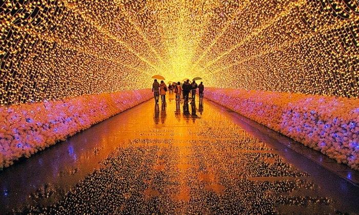 """Nabana no Sato"" งานประดับไฟยิ่งใหญ่ระดับโลก ณ ประเทศญี่ปุ่น"