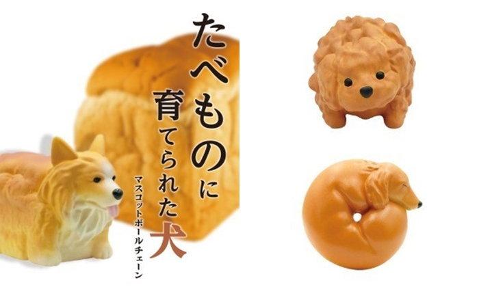 """กาชาปอง """"น้องหมาที่โตขึ้นมาเป็นของกิน"""" แปลกใหม่เกินไปแล้ว!"""