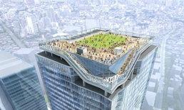 Shibuya Sky Building ตึกระฟ้า 230 เมตร วิว 360 องศา ที่เก็บแลนด์มาร์กโตเกียวไว้ครบ