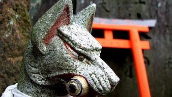 ไขข้อสงสัย ทำไมจึงมีรูปปั้นสัตว์ในศาลเจ้า?