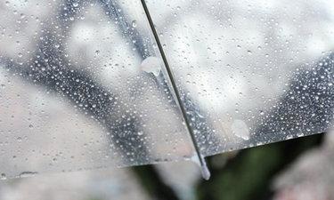 """เรียนรู้ 2 คำศัพท์ญี่ปุ่นเกี่ยวกับ """"ฝน"""" ที่ดูคล้าย ... แต่แตกต่าง!"""