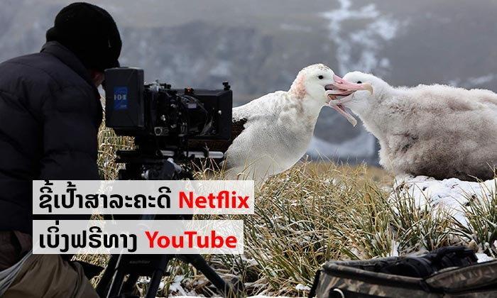 ແຈກໃຫ້ເບິ່ງກັນແບບຟຣີໆ ສາລະຄະດີຄຸນນະພາບຈາກ Netflix ເອົາໄວ້ເບິ່ງໃນໄລຍະກັກໂຕຢູ່ເຮືອນຕ້ານໂຄວິດ-19