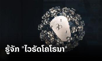 """ມາຮູ້ຈັກກັບເຊື້ອຈຸລະໂລກໃນຕະກຸນ """"ໂຄໂຣນາໄວຣັດ (coronavirus)"""""""