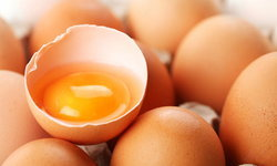 ไข่ไก่...กินได้วันละฟอง