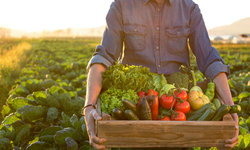 กินอย่างไรให้ผอมและสุขภาพดี