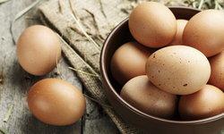 แนะนำ 10 อาหารดีต่อการสร้างกล้ามเนื้อ