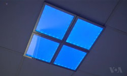 """นักวิจัยชี้ """"บลู ไลท์"""" หรือแสงสีฟ้า ช่วยให้คลายเครียดอย่างรวดเร็ว"""