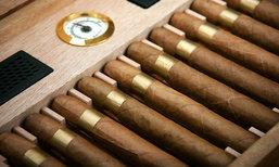 คอ 'ซิการ์' ควรเก็บอย่างไรให้ดูสดและใหม่