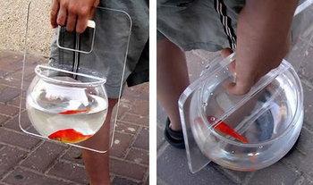 โหลพาปลาทองไปเดินเล่น