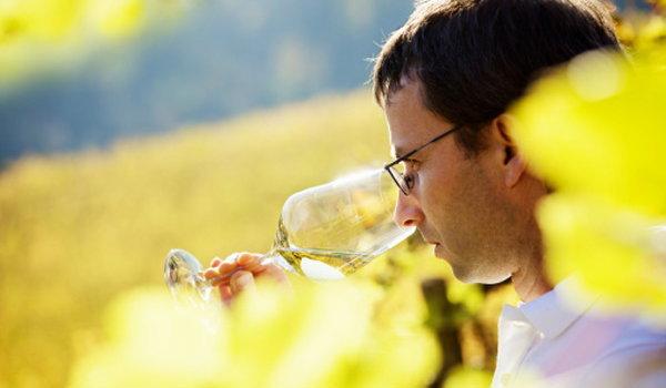 ข้ออ้างผิดๆ เกี่ยวกับการดื่มไวน์