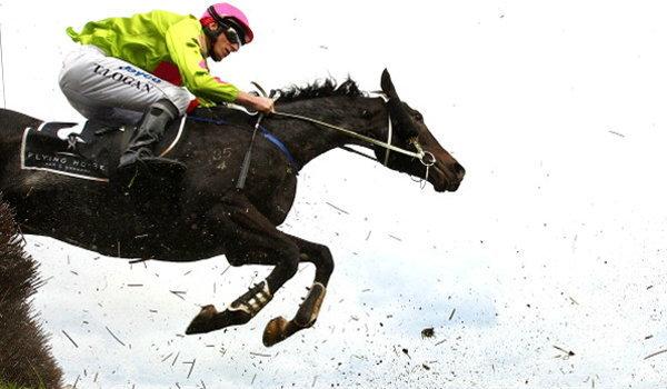 ขี่ม้า กีฬานี้ไม่แพงอย่างที่คิด