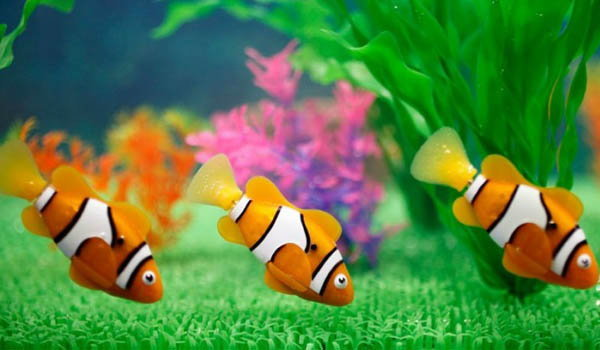 หุ่นยนต์ปลา เลี้ยงง่าย ไม่ต้องเปลี่ยนน้ำ