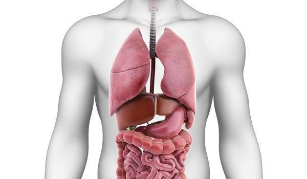 สยบเบาหวาน ใน 6 เดือน ด้วยการล้างพิษตับอ่อน