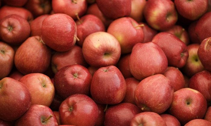 แอปเปิ้ล สุดยอดผลไม้เพื่อสุขภาพ