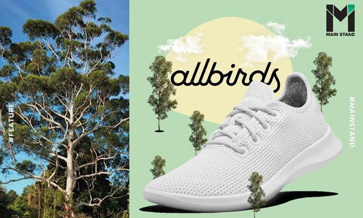 ใส่สบายและรักษ์โลก : ALLBIRDS จากไอเดียอดีตนักเตะอาชีพ สู่สตาร์ทอัพรองเท้าหมื่นล้าน