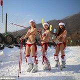 สวมบิกินี่เล่นสกีรับคริสมาสต์