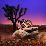 adidas Originals ZX 5000 National Parks