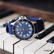 Timex x Greats - Bayman