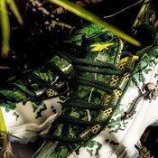 โทรฟี่ที่ได้จากการเป็นนักล่าของ Predator