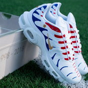 Nike Air Max Plus ในธีมทีมชาติฝรั่งเศส