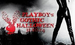 ฟรีปาร์ตี้ PLAYBOY'S GOTHIC HALLOWEEN 2014