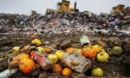 นักธุรกิจหัวใสผลิตสินค้าและเสื้อผ้าจากขยะอาหารและพลาสติก