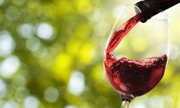 การดื่มไวน์แดง สามารถช่วยลดน้ำหนักได้จริงหรือ?