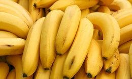 กล้วย : สมุนไพรกล้วยๆ