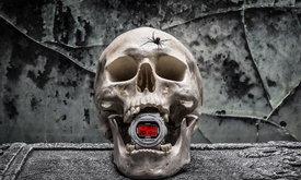 G-Shock x Sneaker Freaker ปล่อย Redback คอลเลคชั่น ต้อนรับฮาโลวีน