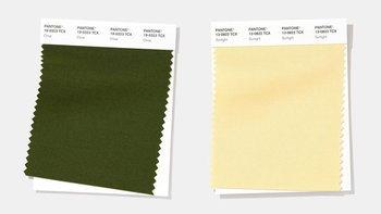 """เทรนด์สีมาแรงปี 2020 """"สีเขียวธรรมชาติ"""" ยืนหนึ่ง"""