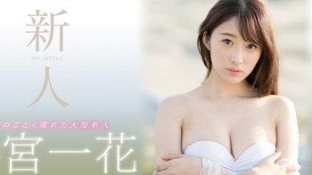 รู้จัก Ichika Hoshimiya นางเอกเอวีหน้าใหม่ สวยใสทุกอณู