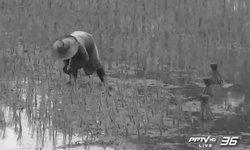 เกษตรกรเตรียมลุกฮือ หลังรัฐจ่อเก็บภาษีการใช้น้ำเพิ่ม