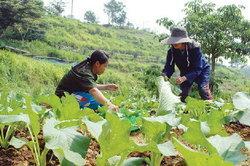 ทางออกเกษตรกรไทย เอาตัวรอดในกระแส AEC