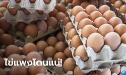 ไข่ไก่ไม่ได้หายไปไหน! กรมการค้าภายใน ย้ำยังมีเพียงพอ ถ้ากักตุนโดนแน่