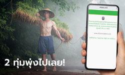 www.เยียวยาเกษตรกร.com จะเปิดให้คนไม่มีบัญชี ธ.ก.ส. แจ้งเลขบัญชีเพื่อรับเงิน 15,000 บาท วันนี้