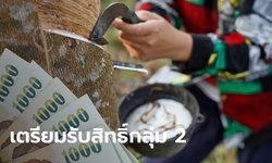 ลงทะเบียนเยียวยาเกษตรกร รับ 15,000 บาท ชาวสวนยางเตรียมรับสิทธิ์เป็นกลุ่มที่ 2