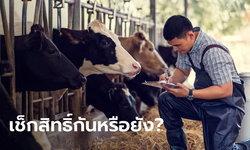 ตรวจสอบสถานะเกษตรกรผู้เลี้ยงสัตว์ หากขึ้นทะเบียน-เข้าเงื่อนไขมีสิทธิ์รับ 15,000 บาท