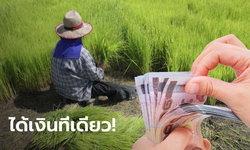 เฉลยขั้นตอนรับเงินเยียวยาเกษตรกร 15,000 บาท รวดเดียว เฉพาะกลุ่มที่ 3