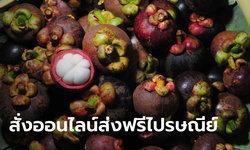 พาณิชย์เร่งแก้มังคุดล้นตลาดจัดโปรฯ สั่งออนไลน์ส่งฟรีผ่านไปรษณีย์ไทย