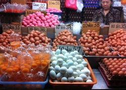 ตลาดเงินวิจิตรราคาไข่ลดหลังอากาศหนาว