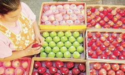 ตลาดไททุ่มงบฯ2.6พันล.ยกระดับ ดันไทยศูนย์กลางค้าส่งผัก-ผลไม้สดรับเปิดเออีซี