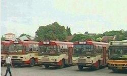 ขสมก.จัดรถเมล์ฟรีงานวันแม่สวนอัมพร9-11สค.
