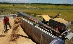 ครม.เห็นชอบตัดหนี้สูญเกษตรกร9,500ล้านบาท