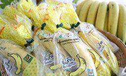 เปิดแหล่งสุดยอดกล้วยหอมขายดีเซเว่น 2.8 หมื่นลูกต่อวัน
