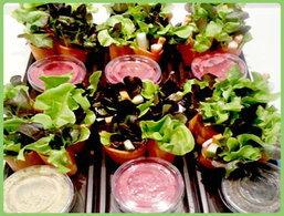 """""""Mr.salad"""" ชูจุดขาย สลัดพอดีคำ สะดวก พกทานได้ทุกที่"""