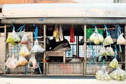 ชิลชิล เดือนละสี่ซ้าห้าหมื่น! ′รถพุ่มพวง′ มาแล้ว ขวัญใจมวลชนคนหมู่บ้าน